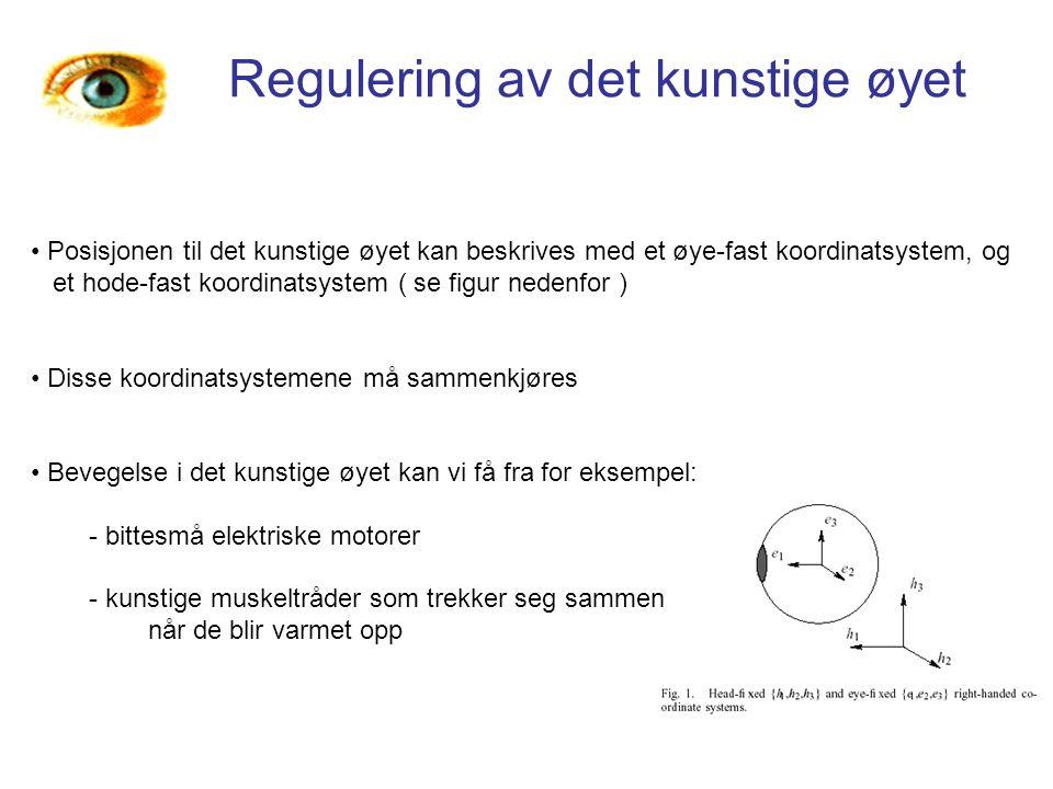 Regulering av det kunstige øyet