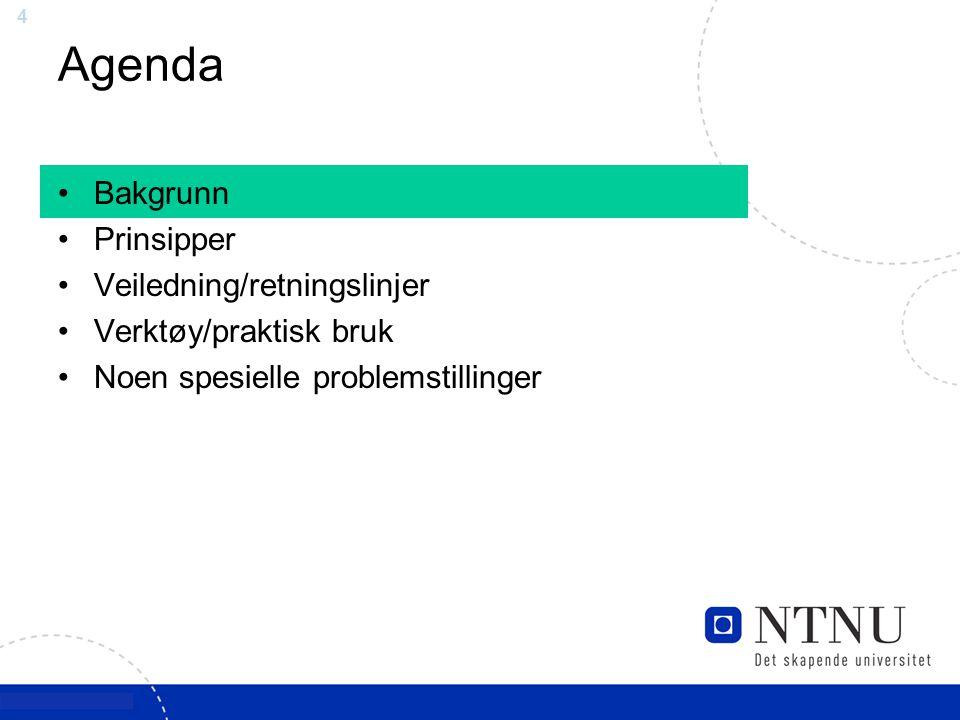 Agenda Bakgrunn Prinsipper Veiledning/retningslinjer