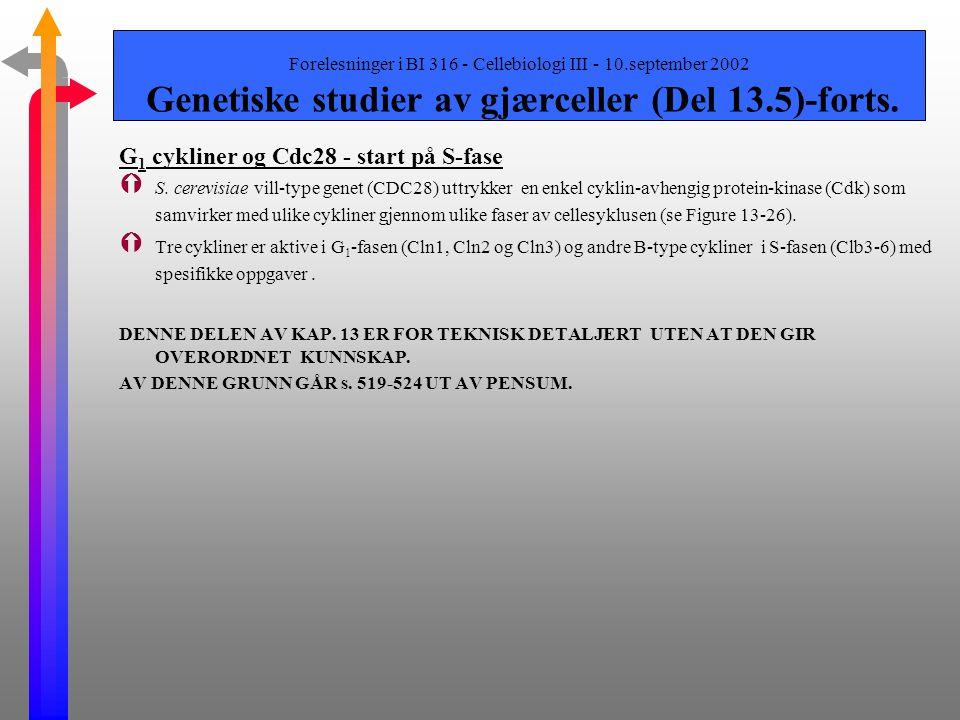 G1 cykliner og Cdc28 - start på S-fase