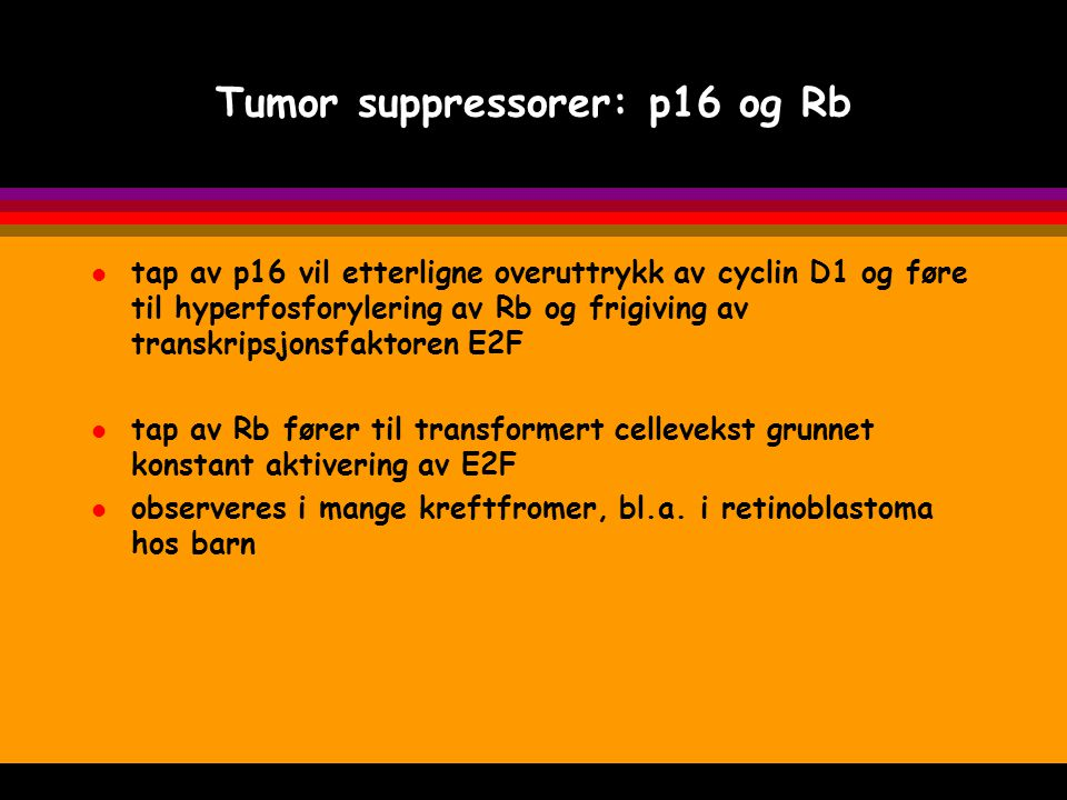 Tumor suppressorer: p16 og Rb