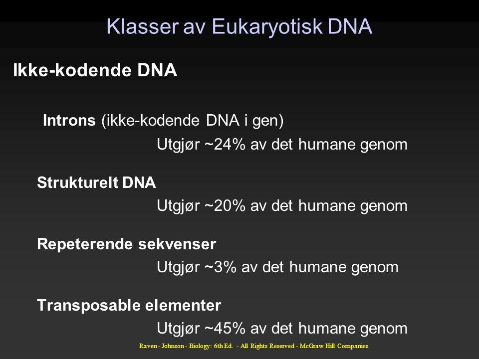 Klasser av Eukaryotisk DNA