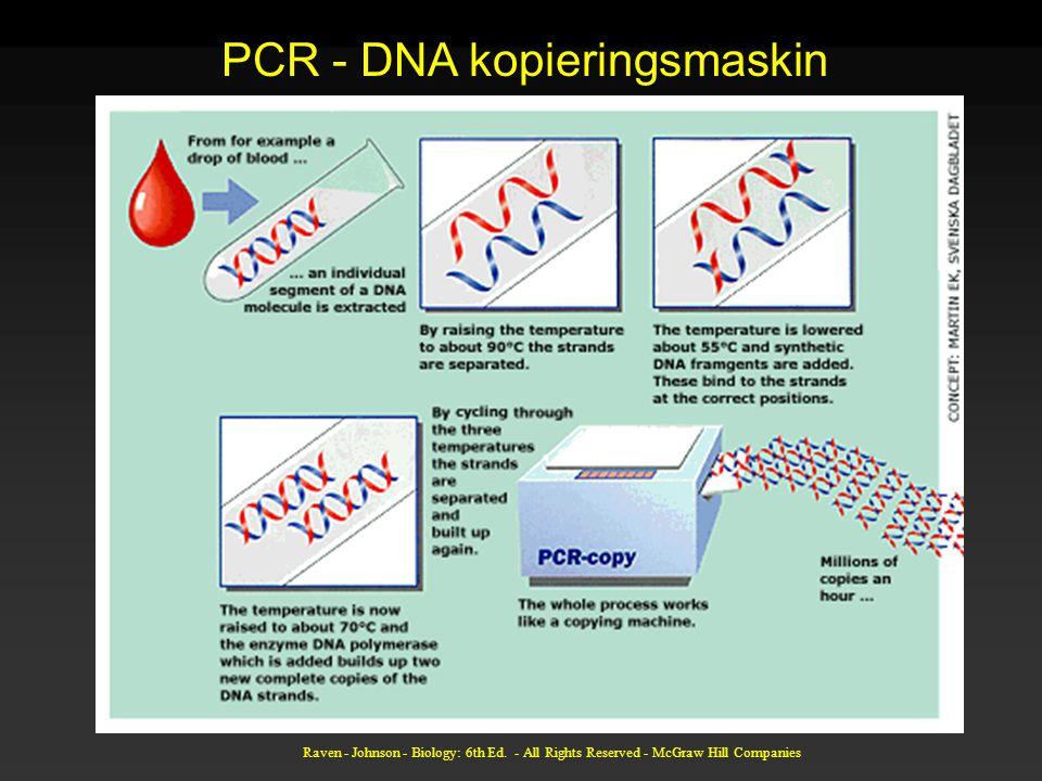 PCR - DNA kopieringsmaskin