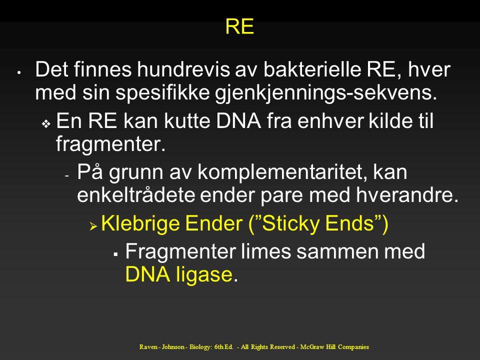 En RE kan kutte DNA fra enhver kilde til fragmenter.