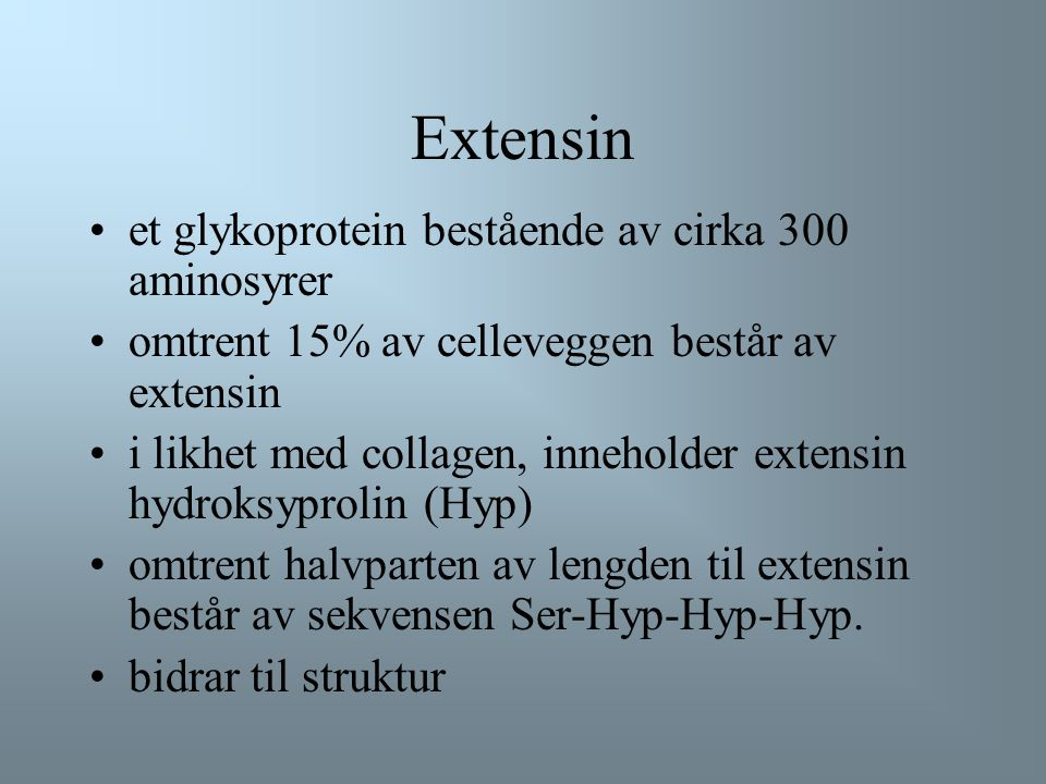 Extensin et glykoprotein bestående av cirka 300 aminosyrer