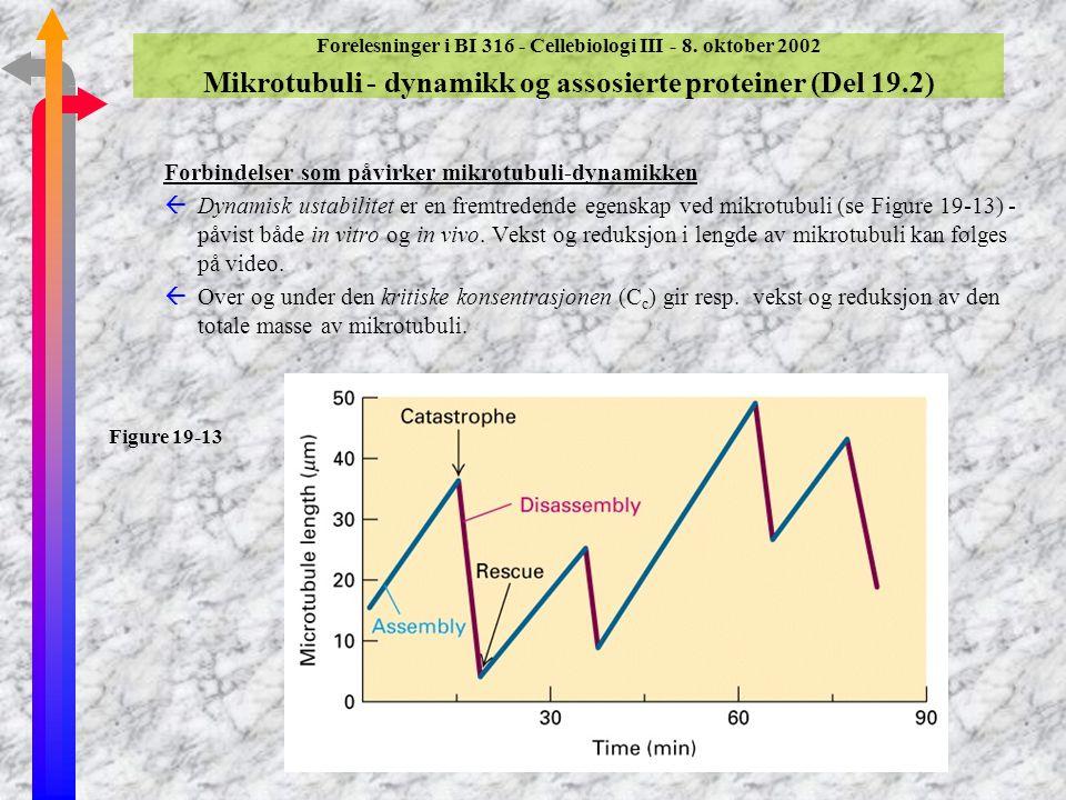 Forbindelser som påvirker mikrotubuli-dynamikken