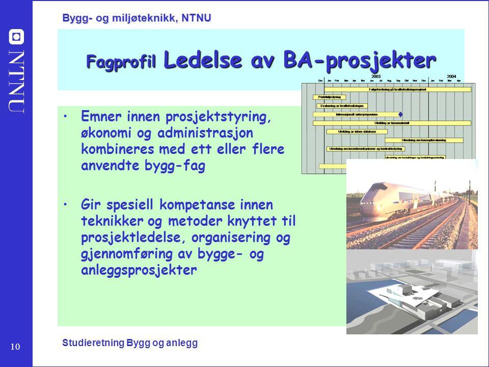 Fagprofil Ledelse av BA-prosjekter