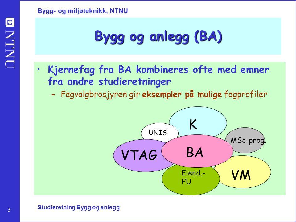 Bygg og anlegg (BA) K BA VTAG VM