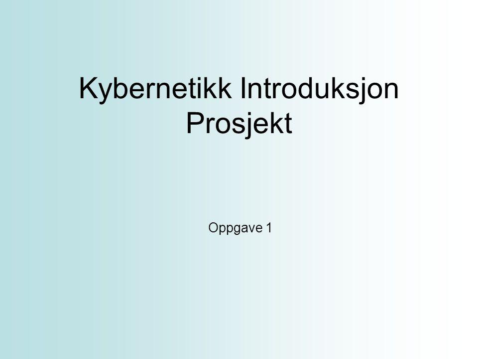 Kybernetikk Introduksjon Prosjekt