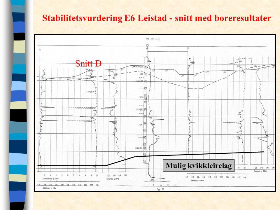 Stabilitetsvurdering E6 Leistad - snitt med boreresultater