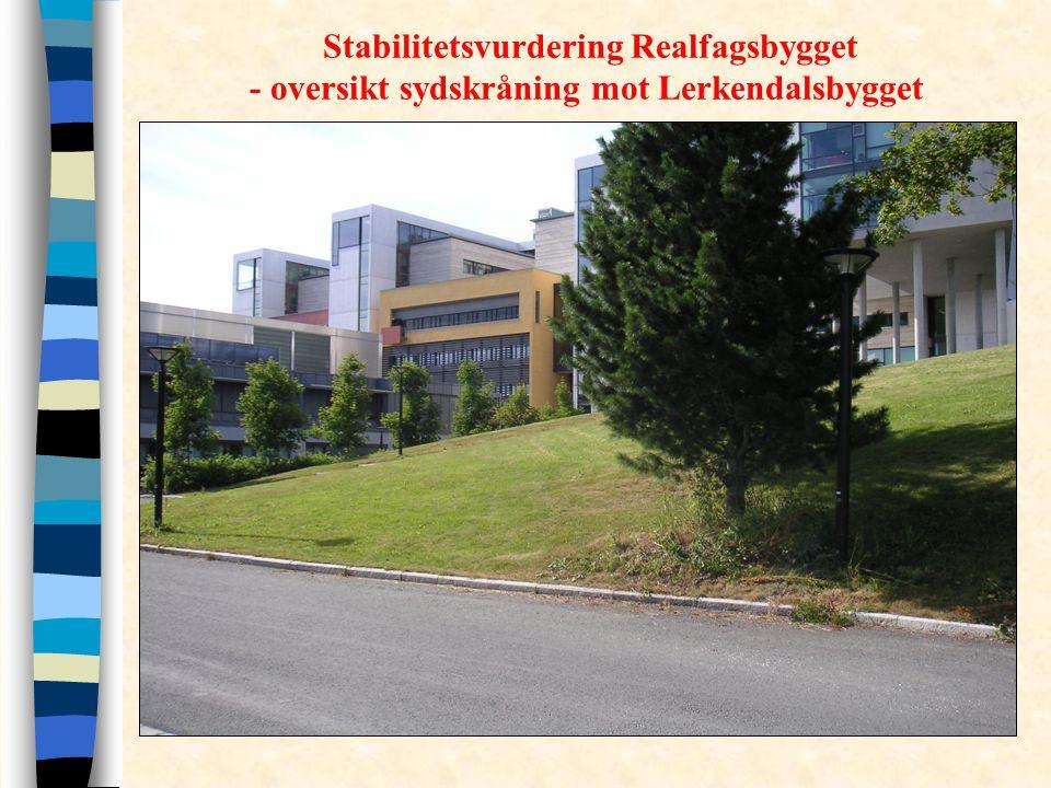 Stabilitetsvurdering Realfagsbygget - oversikt sydskråning mot Lerkendalsbygget