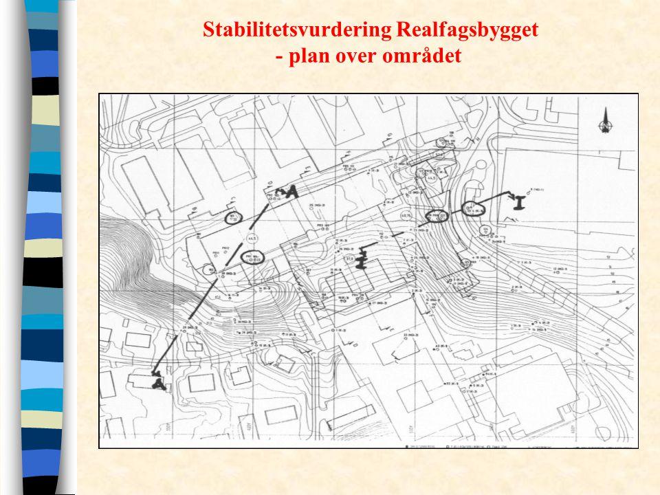 Stabilitetsvurdering Realfagsbygget - plan over området
