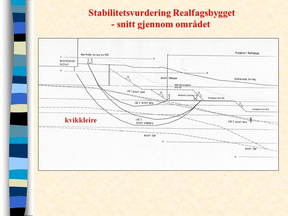 Stabilitetsvurdering Realfagsbygget - snitt gjennom området