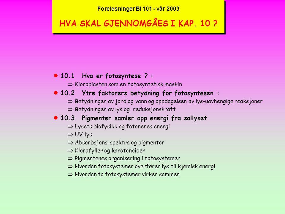 Forelesninger BI 101 - vår 2003 HVA SKAL GJENNOMGÅES I KAP. 10