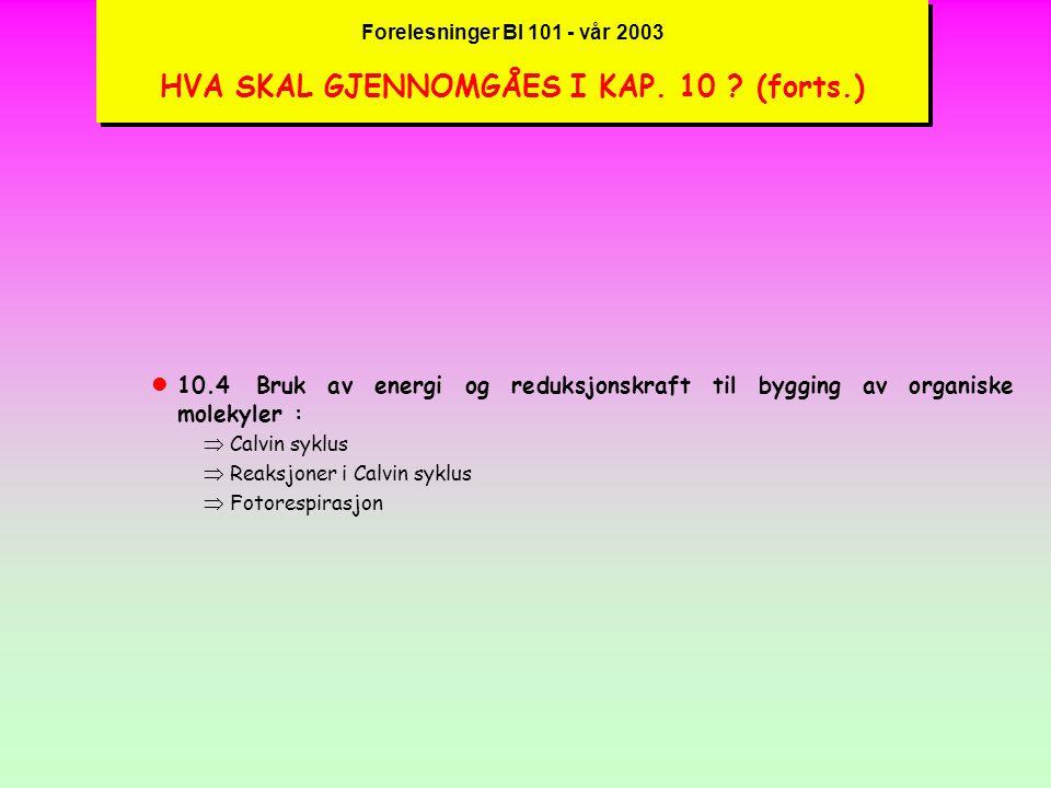Forelesninger BI 101 - vår 2003 HVA SKAL GJENNOMGÅES I KAP. 10. (forts