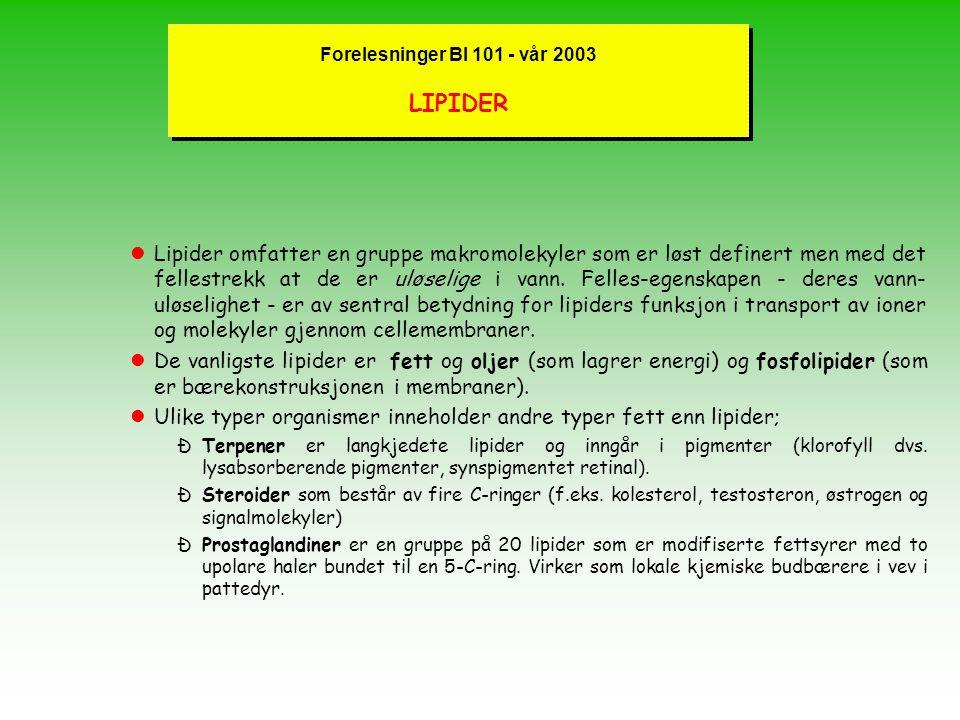 Forelesninger BI 101 - vår 2003 LIPIDER