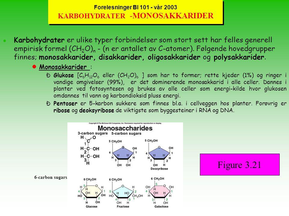 Forelesninger BI 101 - vår 2003 KARBOHYDRATER -MONOSAKKARIDER
