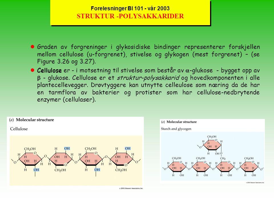 Forelesninger BI 101 - vår 2003 STRUKTUR -POLYSAKKARIDER