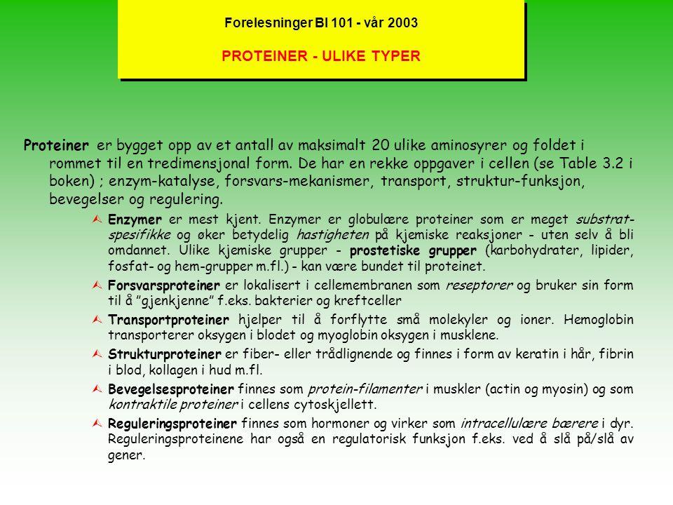 Forelesninger BI 101 - vår 2003 PROTEINER - ULIKE TYPER