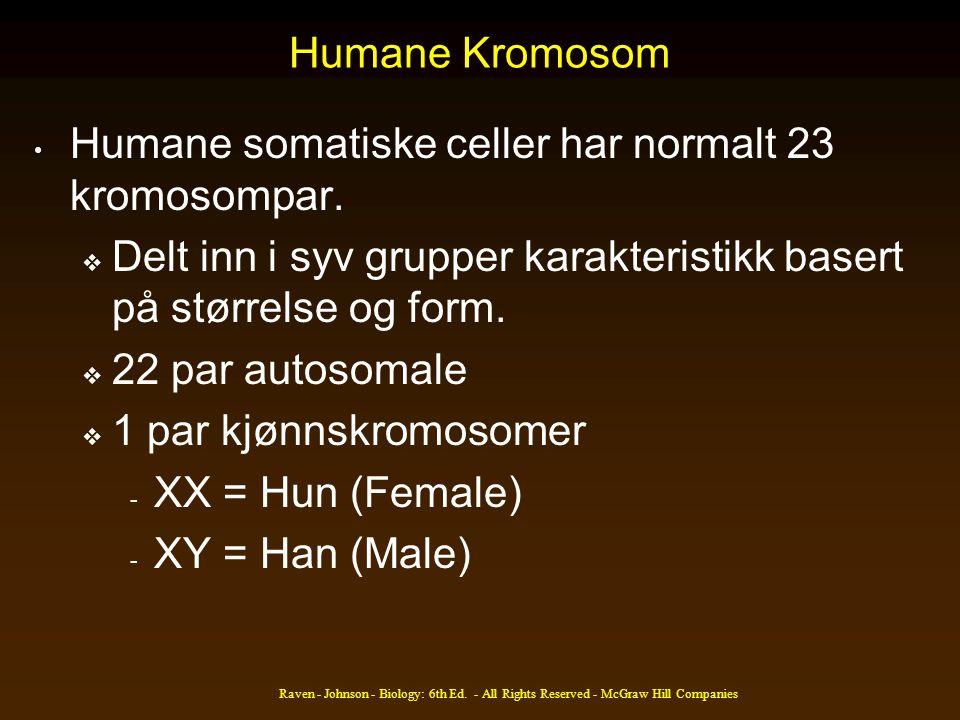 Humane somatiske celler har normalt 23 kromosompar.