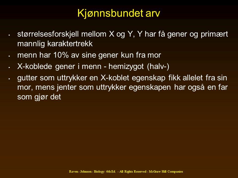 Kjønnsbundet arv størrelsesforskjell mellom X og Y, Y har få gener og primært mannlig karaktertrekk.