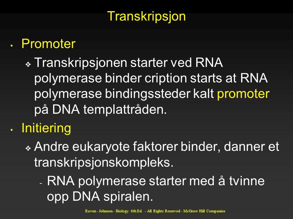 Andre eukaryote faktorer binder, danner et transkripsjonskompleks.