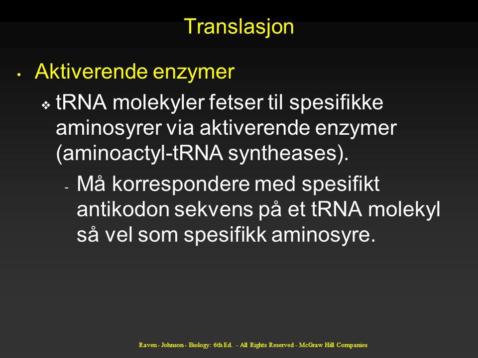 Translasjon Aktiverende enzymer