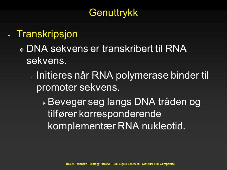 DNA sekvens er transkribert til RNA sekvens.