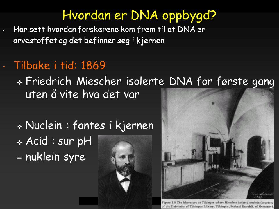 Hvordan er DNA oppbygd Tilbake i tid: 1869