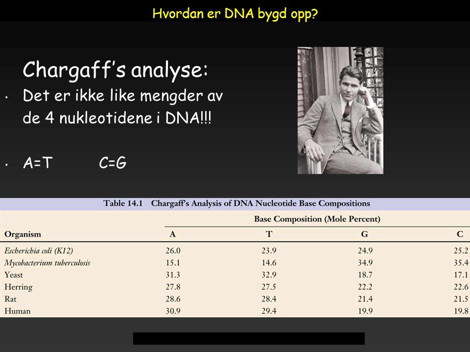 Chargaff's analyse: Det er ikke like mengder av