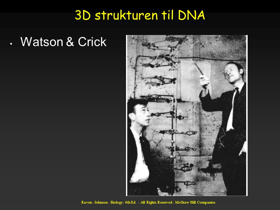 3D strukturen til DNA Watson & Crick