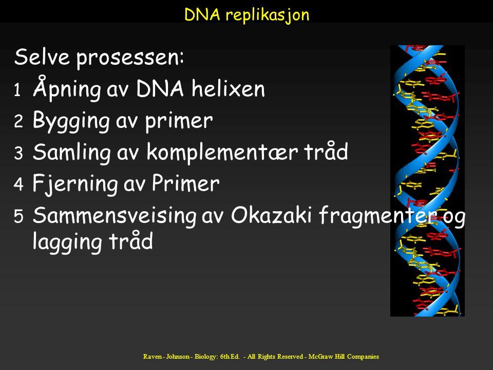 Samling av komplementær tråd Fjerning av Primer