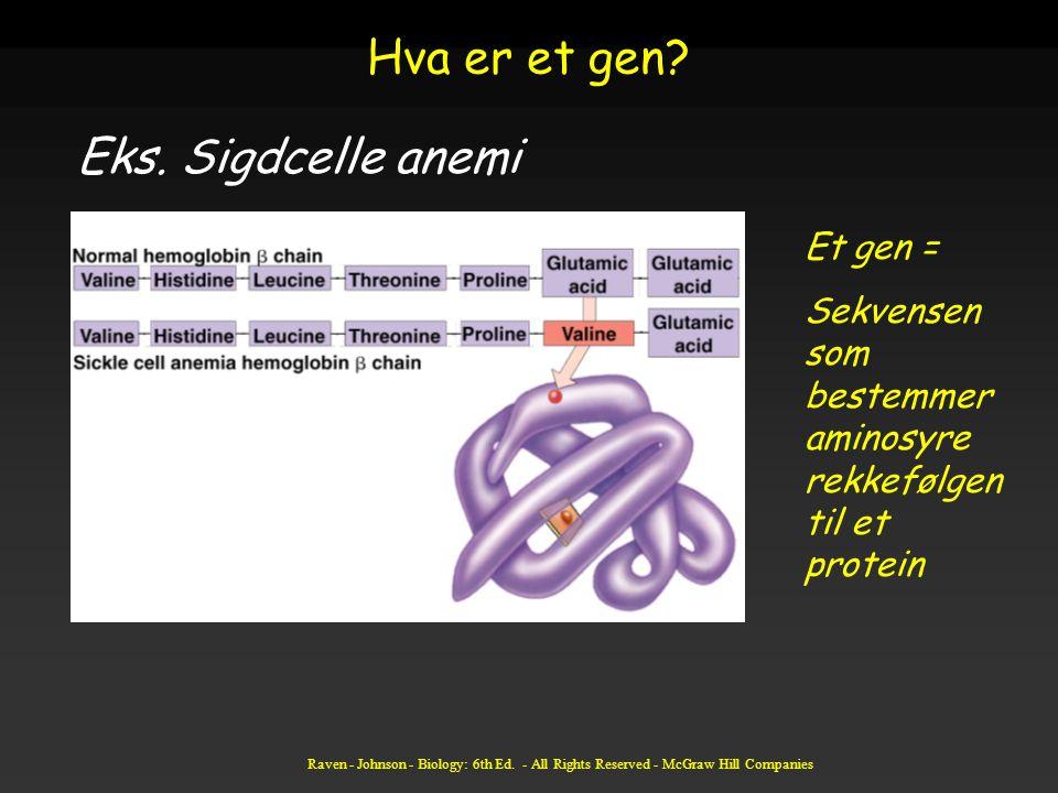 Hva er et gen Eks. Sigdcelle anemi Et gen =