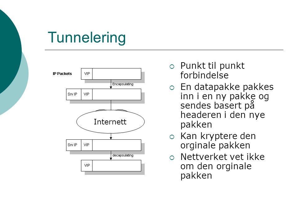 Tunnelering Punkt til punkt forbindelse