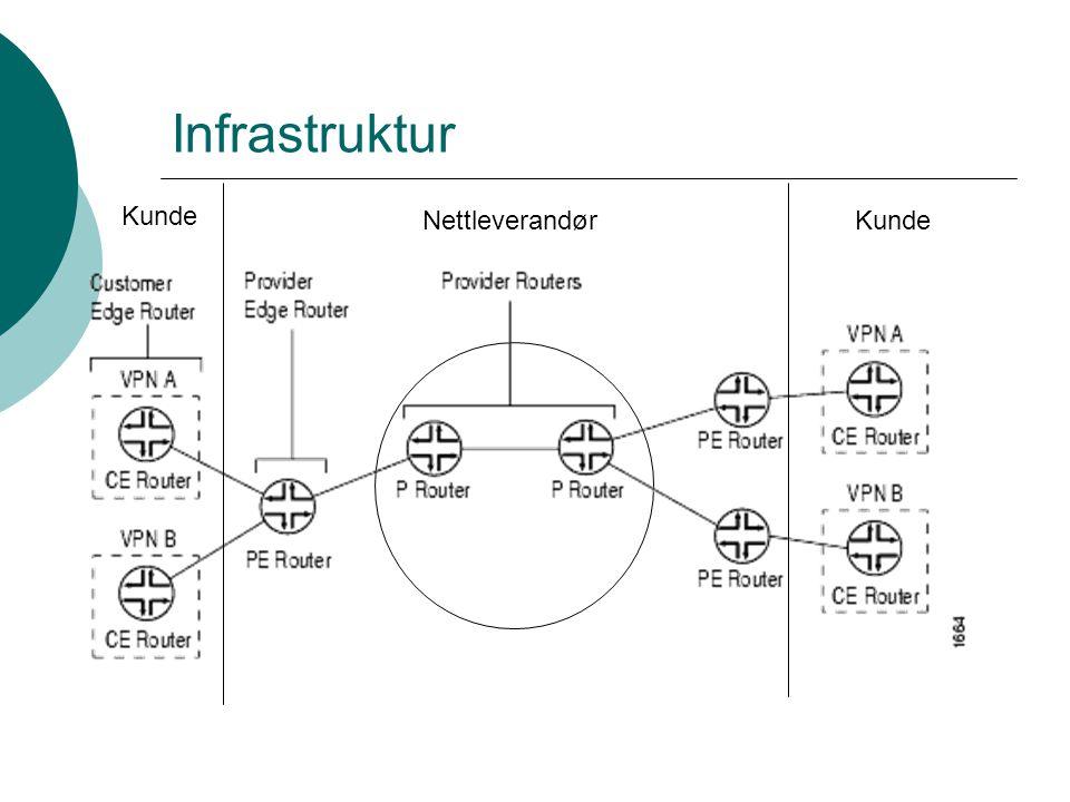 Infrastruktur Kunde Nettleverandør Kunde