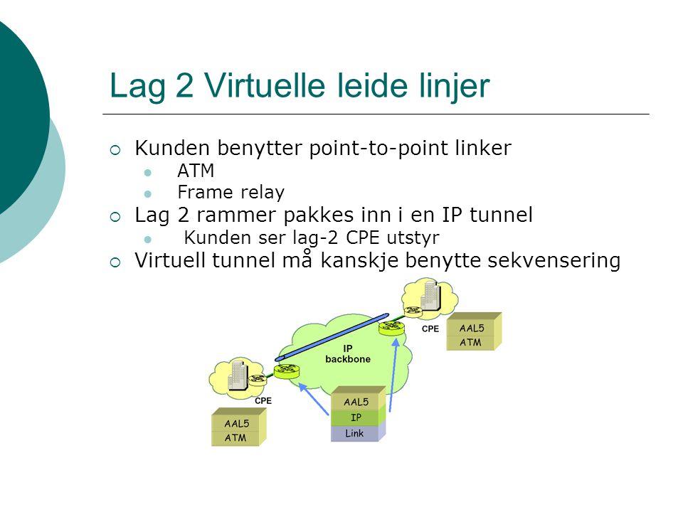 Lag 2 Virtuelle leide linjer