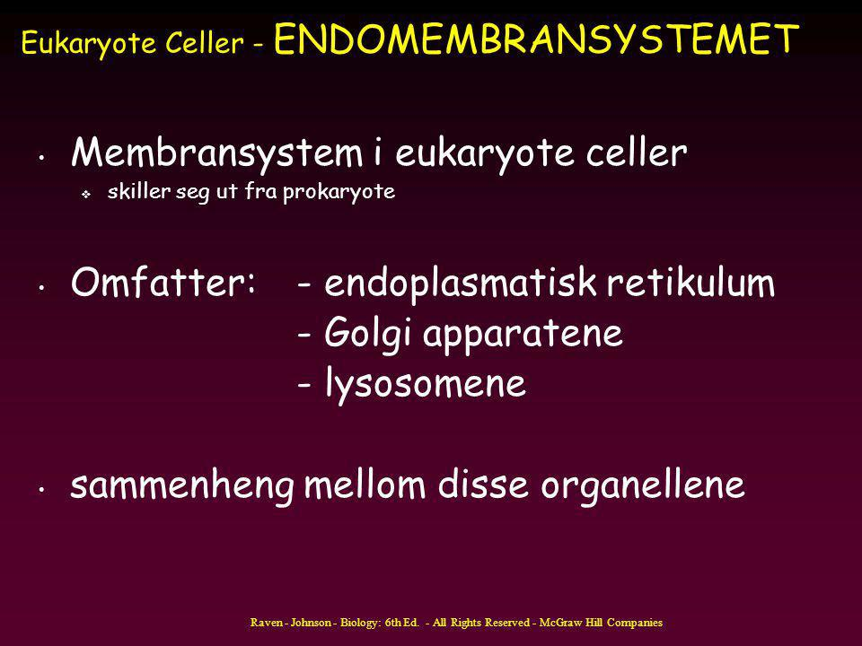 Eukaryote Celler - ENDOMEMBRANSYSTEMET