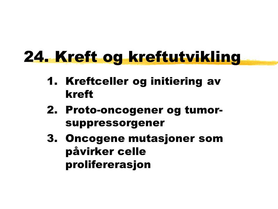 24. Kreft og kreftutvikling