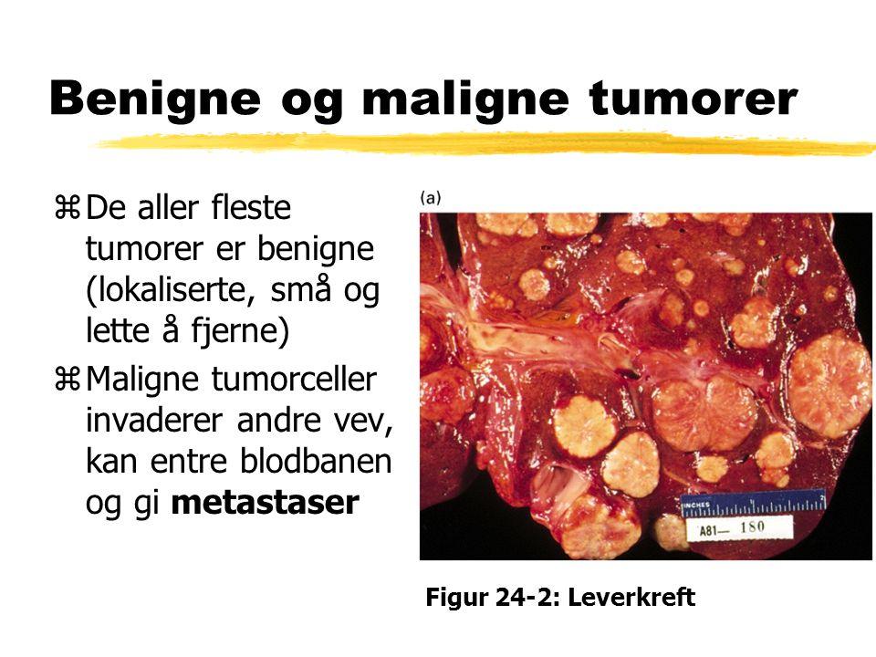 Benigne og maligne tumorer