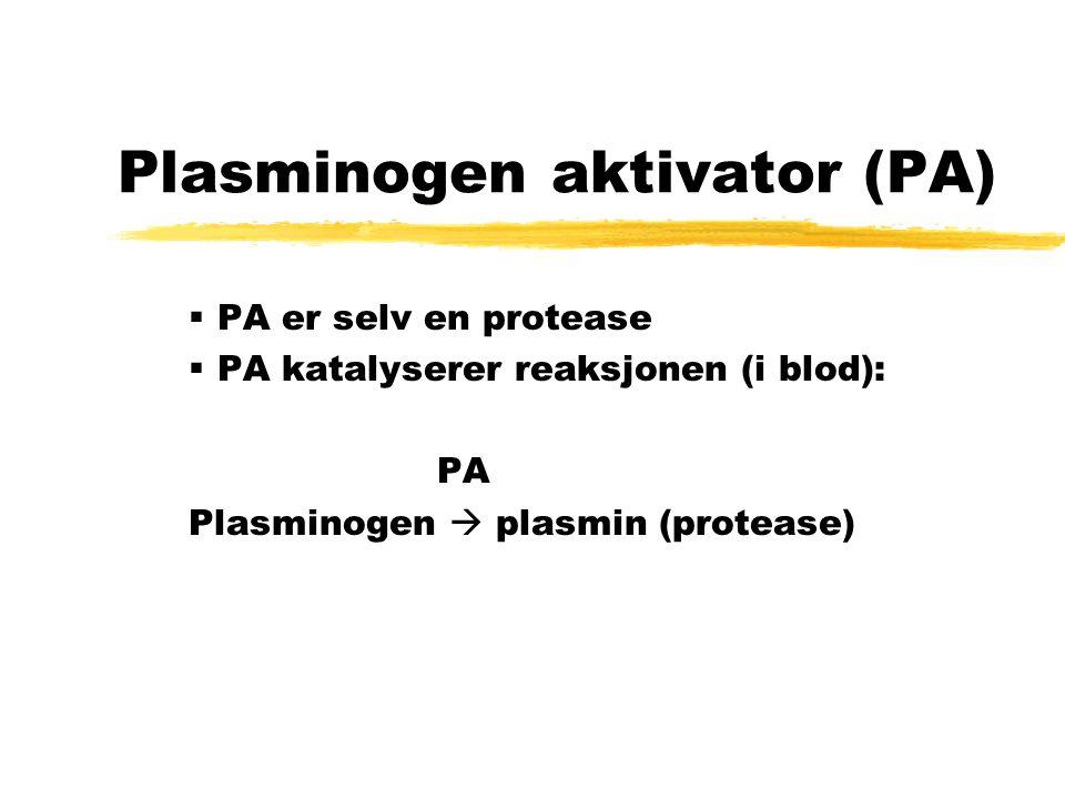 Plasminogen aktivator (PA)