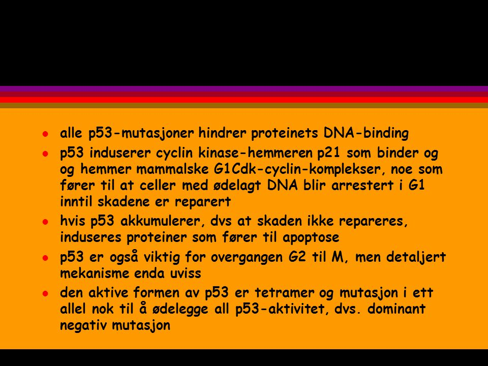alle p53-mutasjoner hindrer proteinets DNA-binding