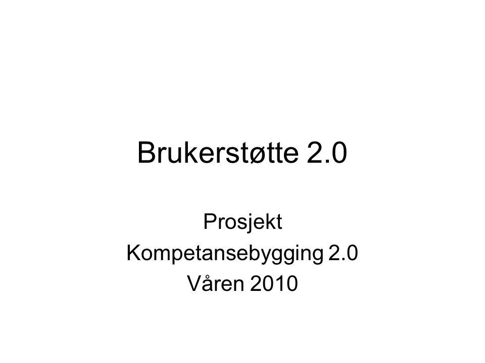 Prosjekt Kompetansebygging 2.0 Våren 2010