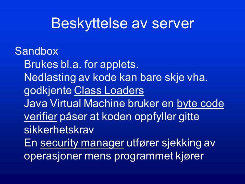 Beskyttelse av server