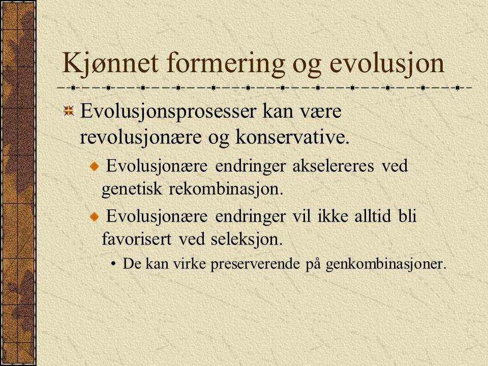 Kjønnet formering og evolusjon