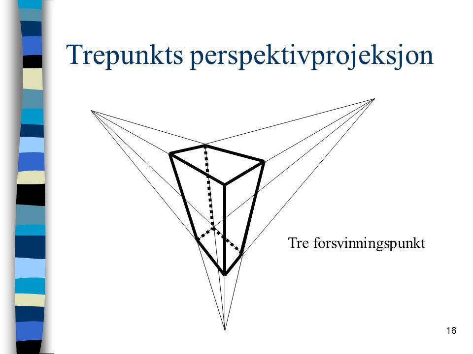 Trepunkts perspektivprojeksjon