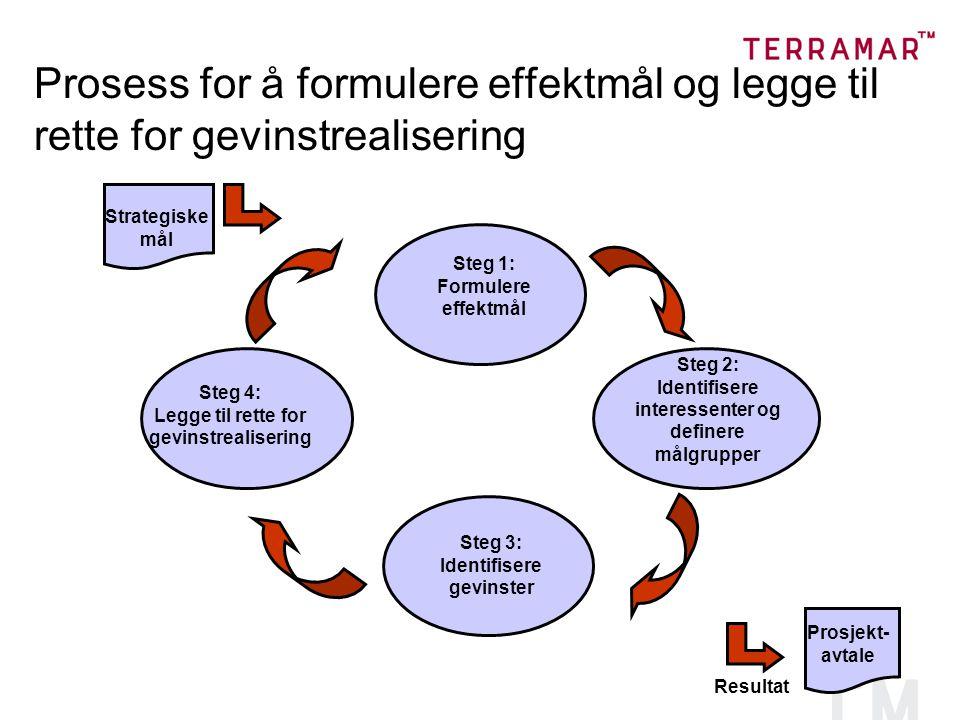 Prosess for å formulere effektmål og legge til rette for gevinstrealisering