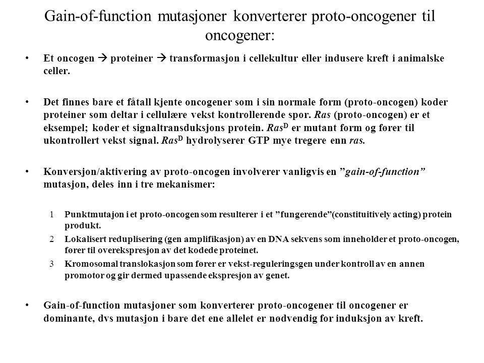 Gain-of-function mutasjoner konverterer proto-oncogener til oncogener: