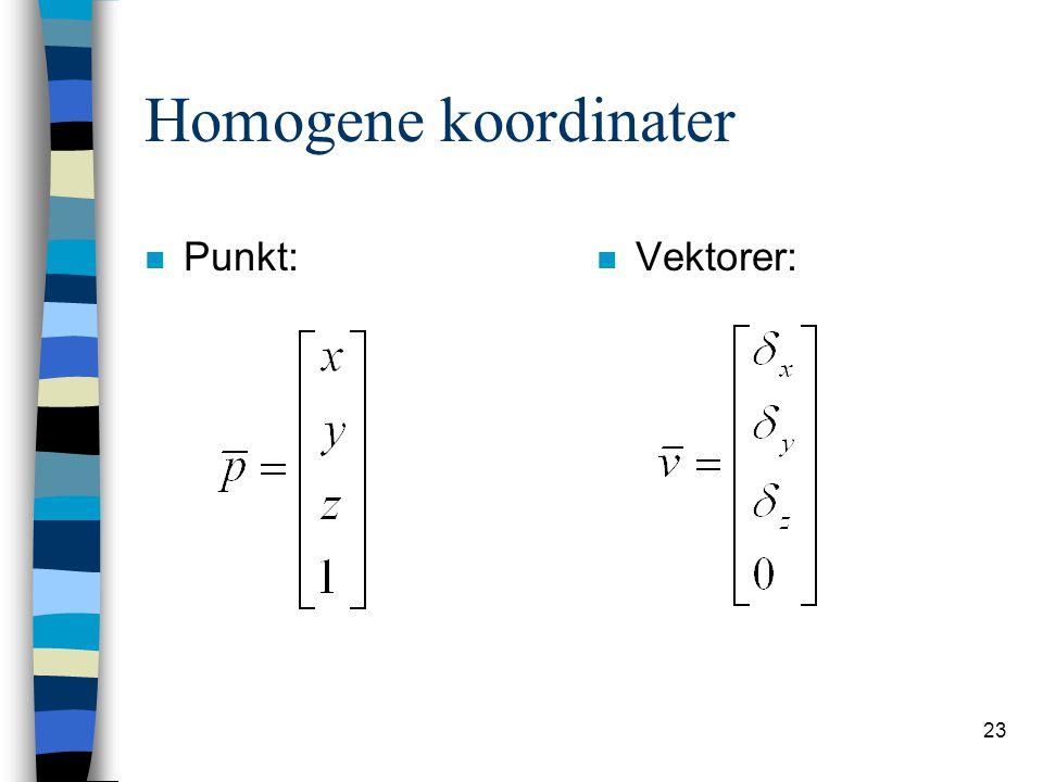 Homogene koordinater Punkt: Vektorer: