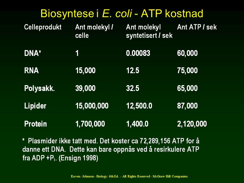 Biosyntese i E. coli - ATP kostnad