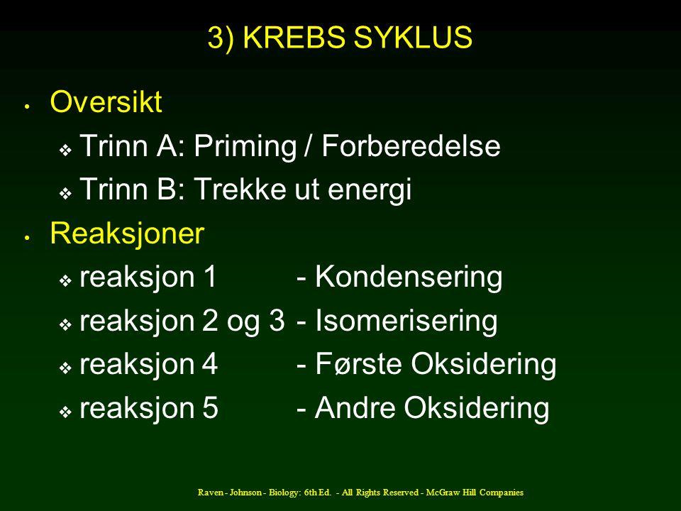 Trinn A: Priming / Forberedelse Trinn B: Trekke ut energi Reaksjoner