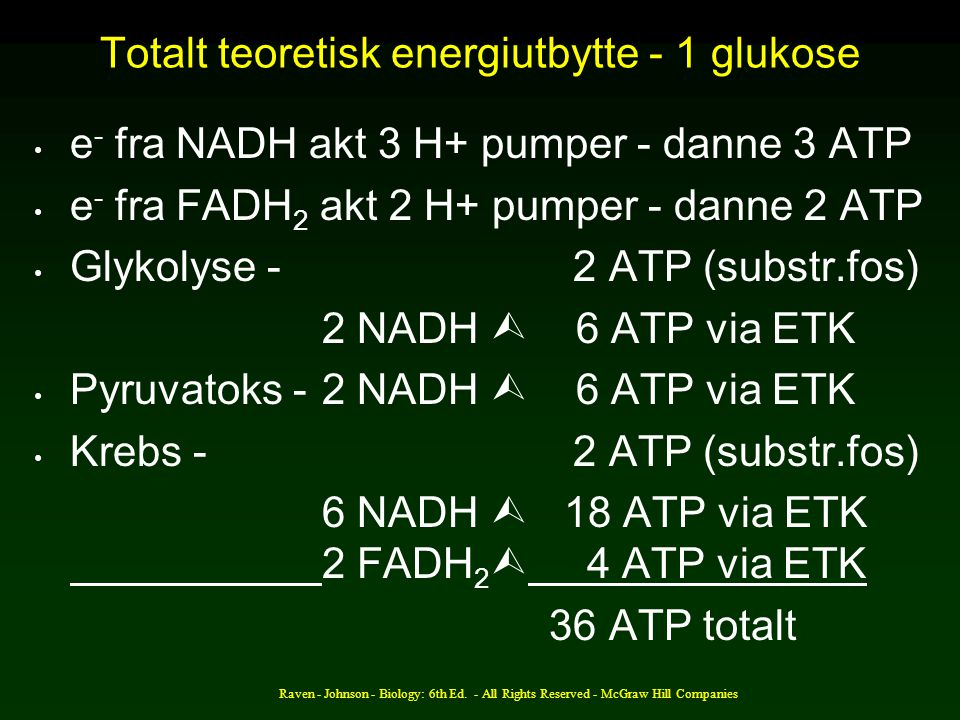 Totalt teoretisk energiutbytte - 1 glukose